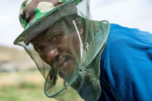 Usman, agricultor de la finca ecológica